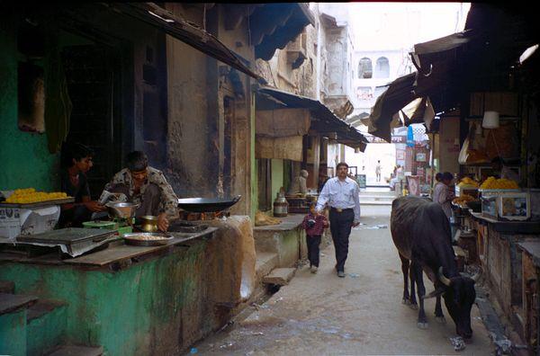 Une rue un peu atypique de Pushkar. Les autres sont remplies de boutiques de fringues pour baba cools et de petits restos. Ici, c'est la rue des restos indiens.