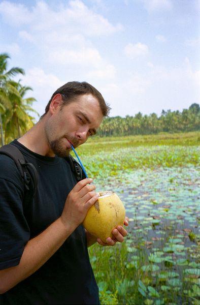 arrêt pour boire de l'eau de coco