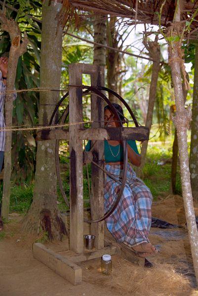 Fabrication de corde... la dame tourne la roue pendant que deux autres femmes filent la fibre de noix de coco