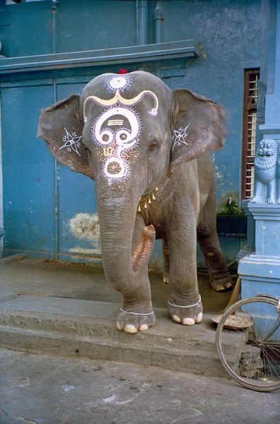 Ganesh en personne devant le temple